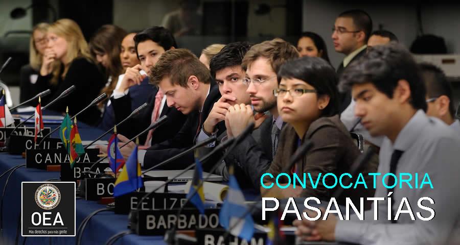 Pasantías en la OEA