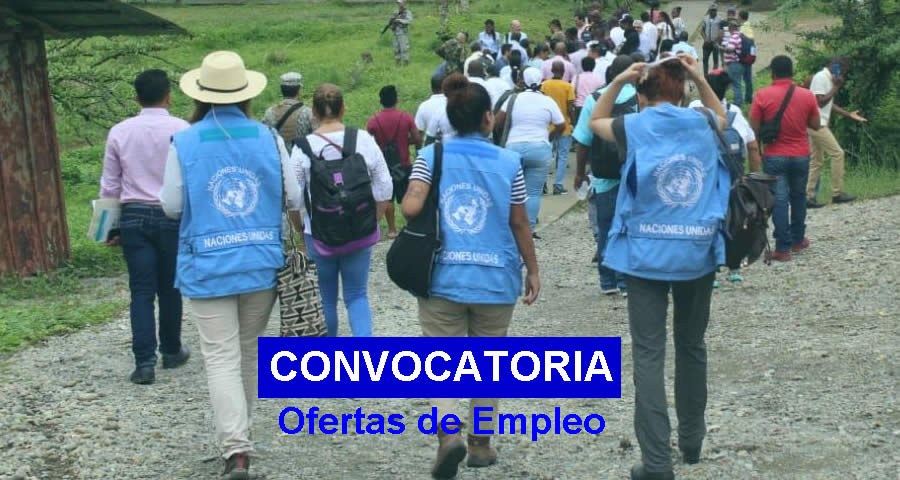 Empleo en Misión de Verificación de la ONU